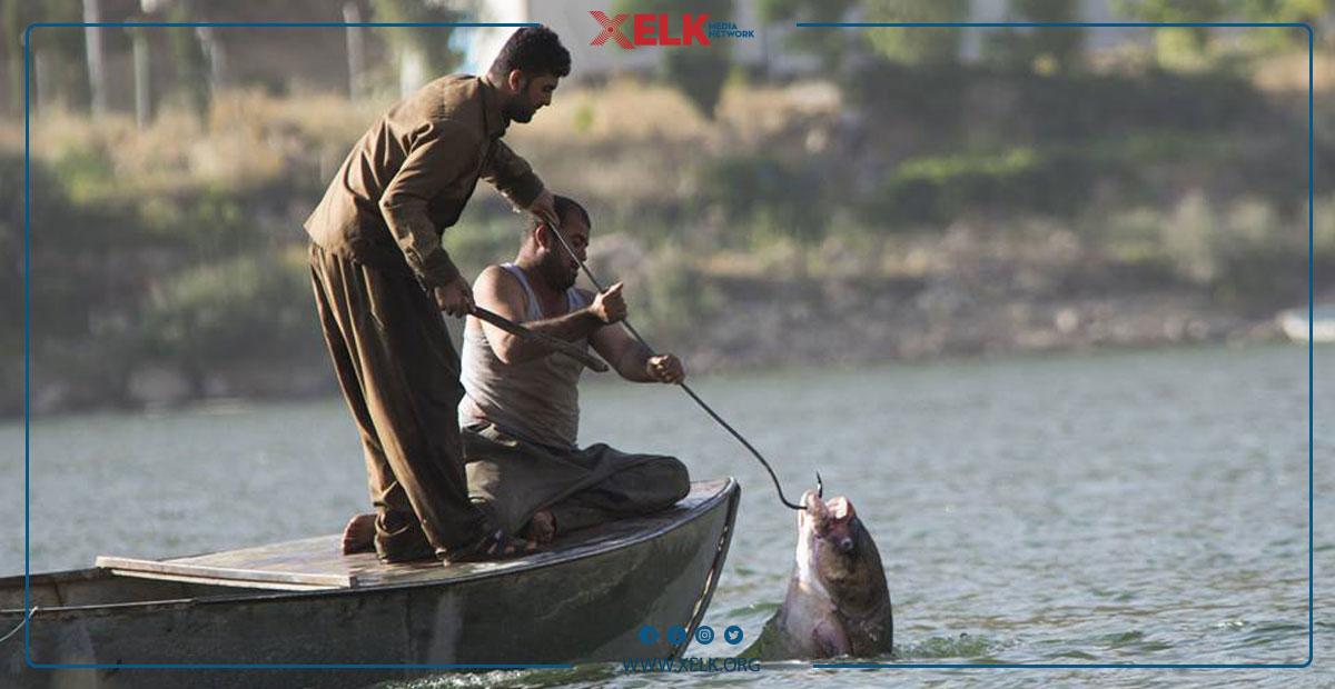 كاتی قەدەغەی ڕاوە ماسی دیاریكرا