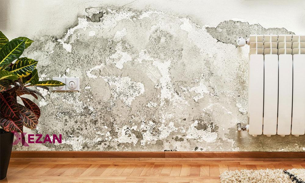 چۆن ڕتوبەتی (شێی)دیواری ماڵەکانتان چارەسەر دەکەن؟